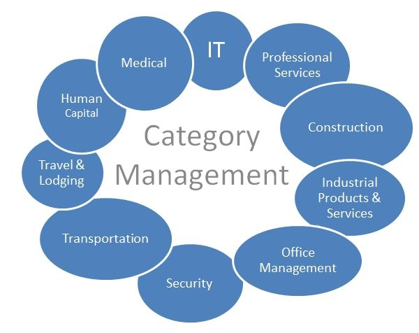 What is category management in procurement elaine porteous for Procurement category strategy template